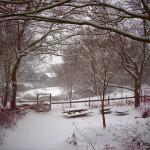 Home snowbound2b